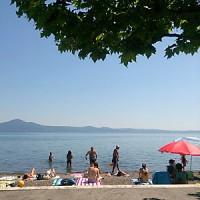 湖_夏のにぎわい